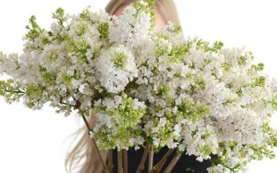 Leikkosyreenin ihmeellinen matka kukkamaljakon kaunottareksi