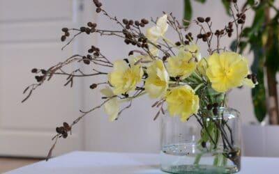 Viikon tulppaanivinkki – tulppaanit ja lepänoksat