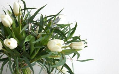 Viikon tulppaanivinkki – Rento tulppaanikimppu