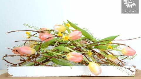 Tulppaanit ja narsissit suloisesti sekaisin