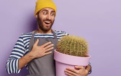 Millainen Kukkaystävä olet? – katso kymmenen kasvia ja niiden hauskat persoonallisuudet