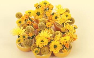 Keltainen sitrusaurinko loistaa keväisesti – tee leikkisä kukka-asetelma sitruunanpuolikkaista