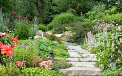 Kesän parhaat puutarhasarjat