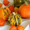 Tämä oranssi kukka muistuttaa aivan paperilyhtyä – voit istuttaa sen myös puutarhaasi