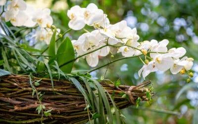 The Hanging Garden on aisteja kutkuttava kukkasidontanäyttely