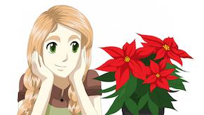 Emmin kukkakoulu joulukukkien hoito pieni artikkelikuva